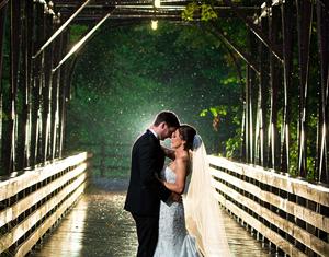Let's Plan Your Dream Wedding